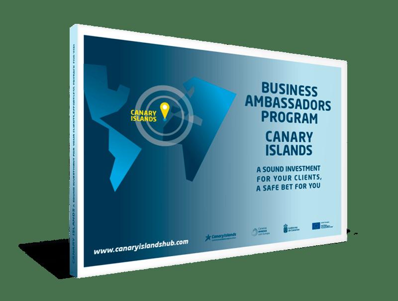 Business Abassadors Program ebook cover